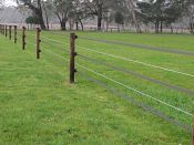 StockGuard plus sita wire for horse/cattle/sheep containment