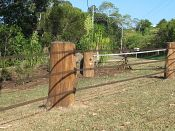 StockGuard demonstration fence - Queensland