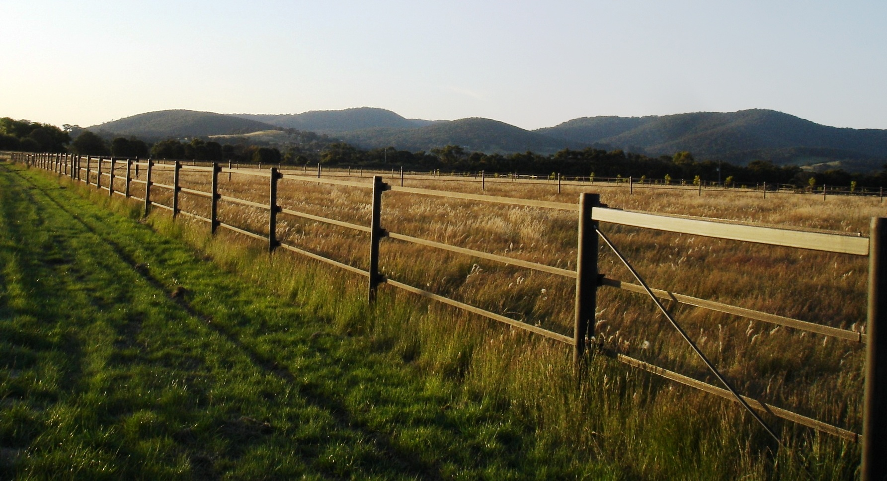 Horse fencing Mornington
